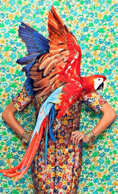 sustainable fashion featuring marni floral dress and parrot 400 x 659